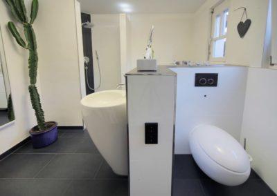 badsanierung teilsanierung - bad mit gegensaetzen4