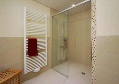 badsanierung teilsanierung - duschbad mit waschtisch und toilette2