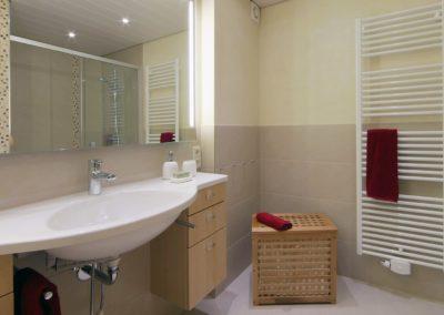 badsanierung teilsanierung - duschbad mit waschtisch und toilette3