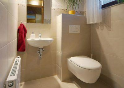badsanierung teilsanierung - duschbad mit waschtisch und toilette4